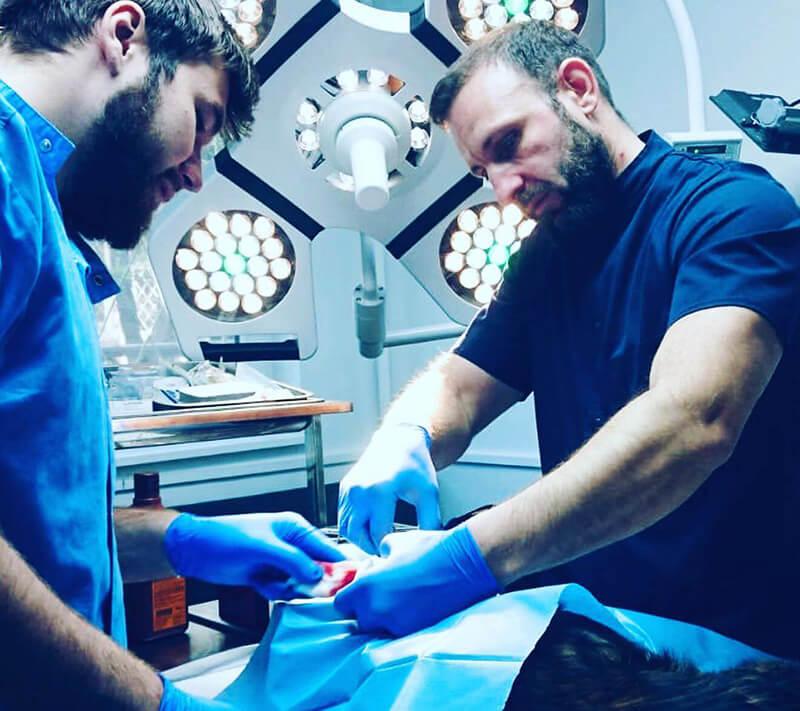 chirurgie veterinara Vet4Pet